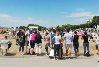 Die gelungene EQUITANA OPEN AIR Premiere in Mannheim