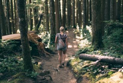 Branchenbefragung zum Wandertourismus 2020 veröffentlicht